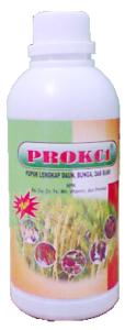 prokcl